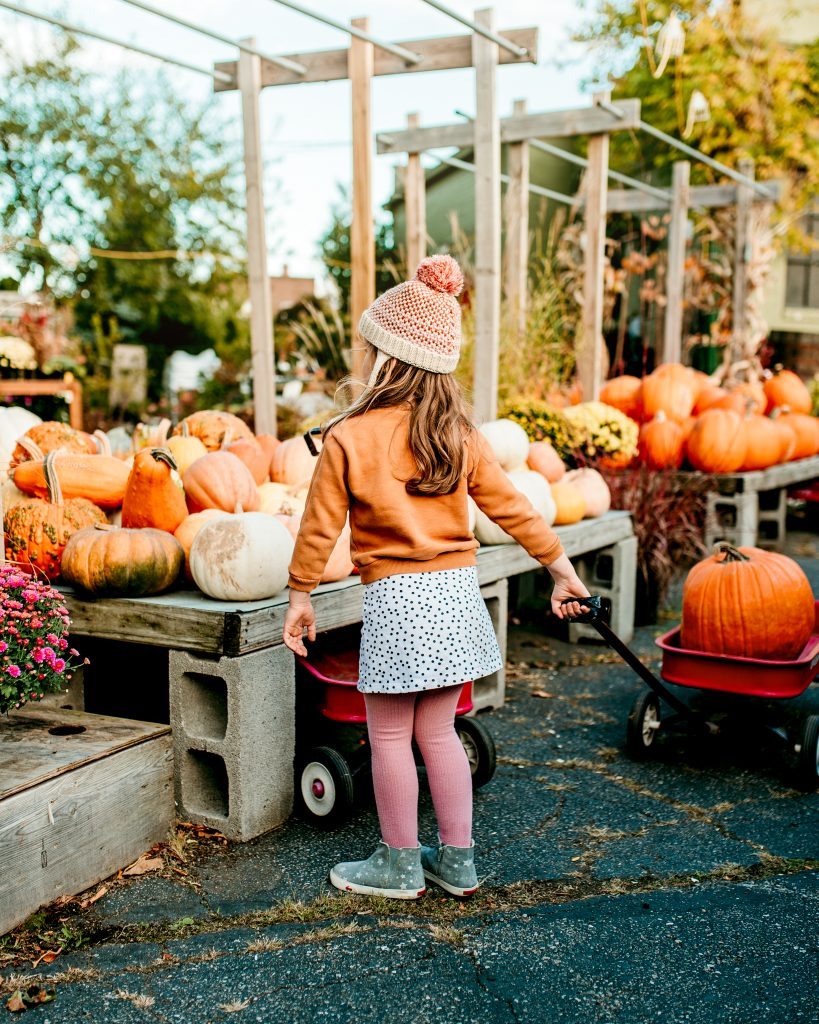 Fall Little Girl Style
