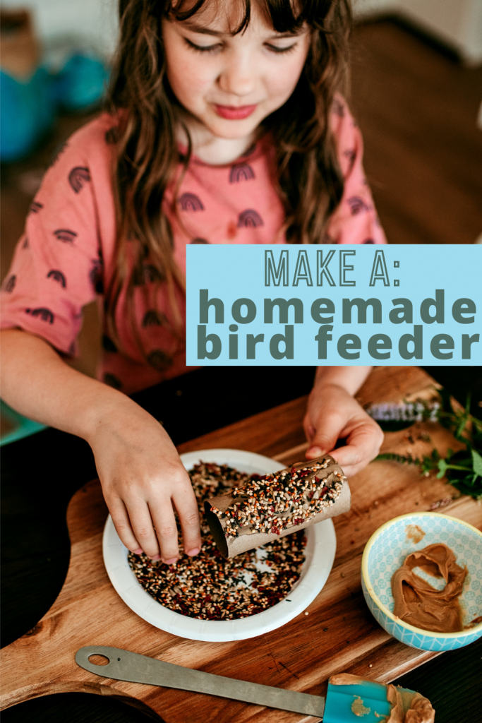 Make an easy homemade bird feeder with your kids! A nature inspired activity for young kids made by reusing a paper roll.
